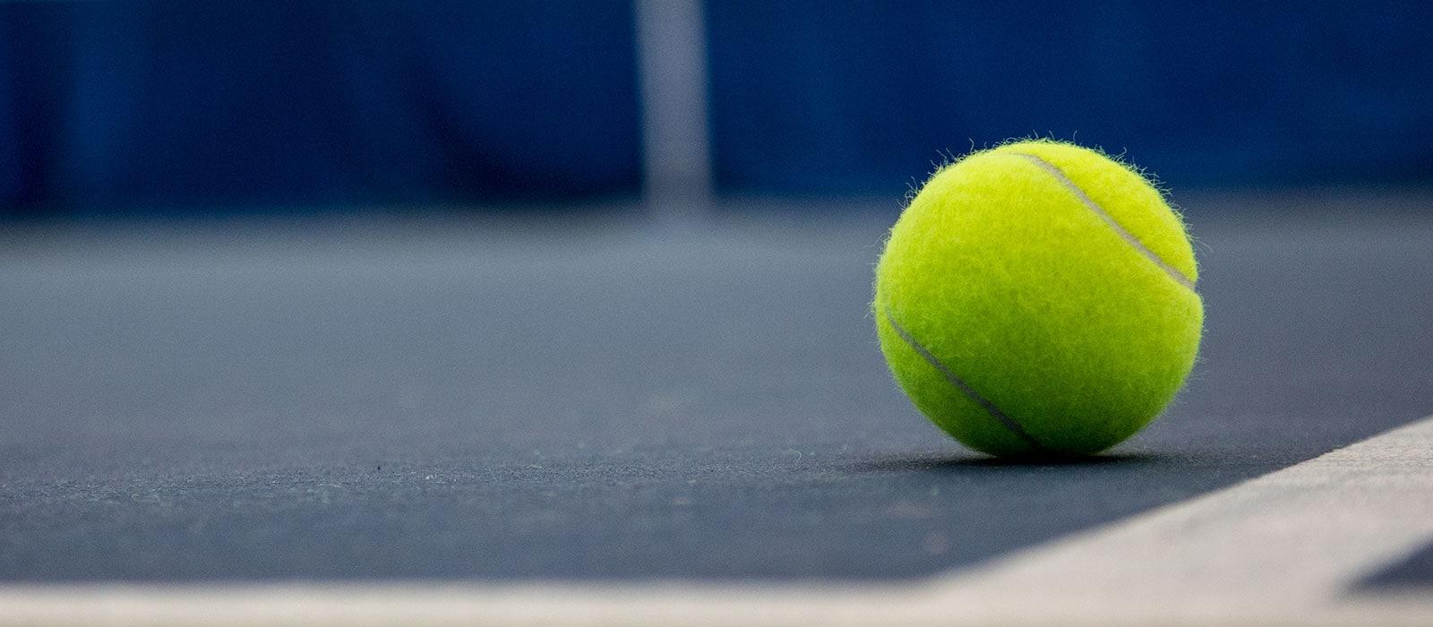 tennisballcourt3